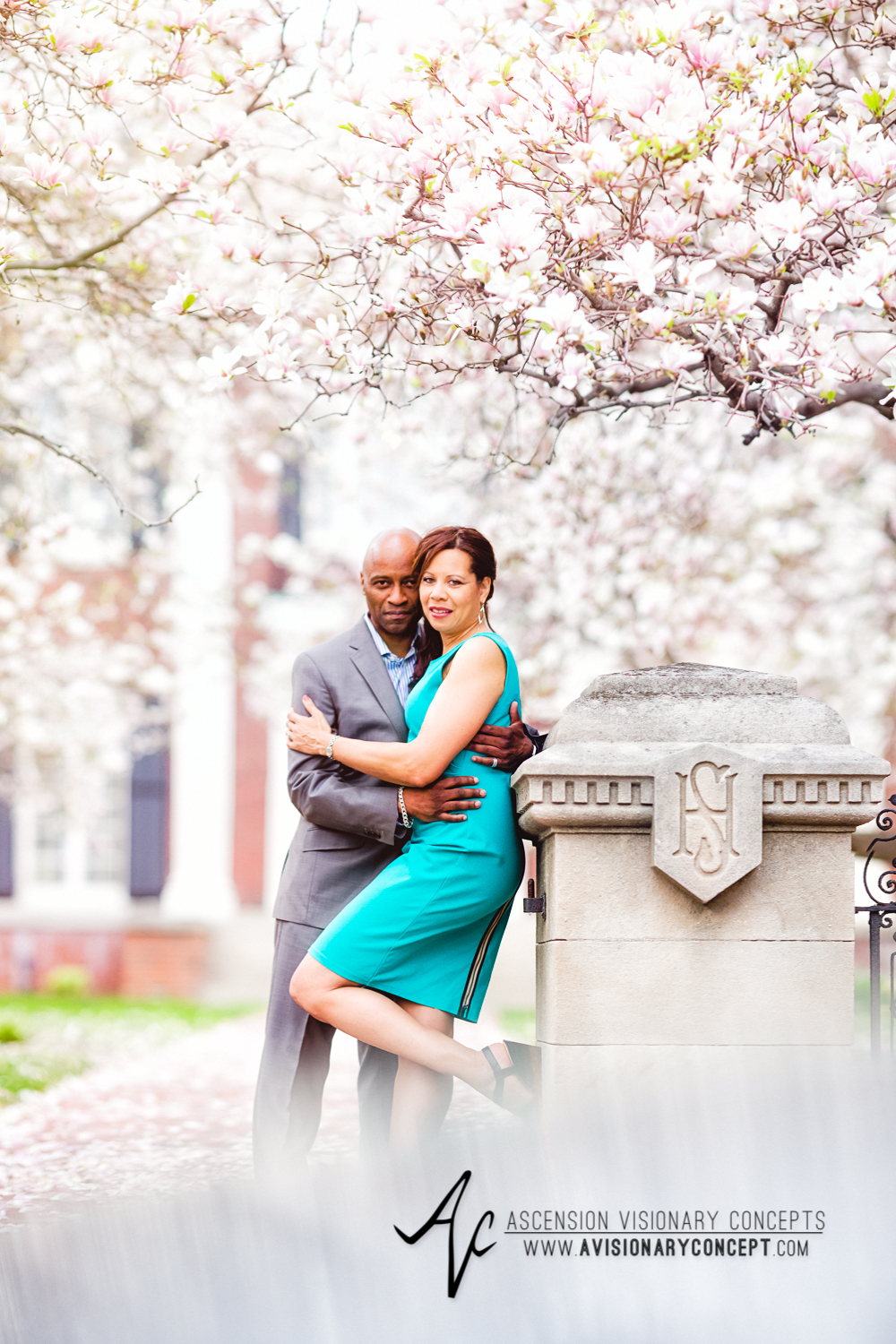 Buffalo Rochester Engagement Photography Spring Photography 001 Magnolia Trees Pink Blooms.jpg