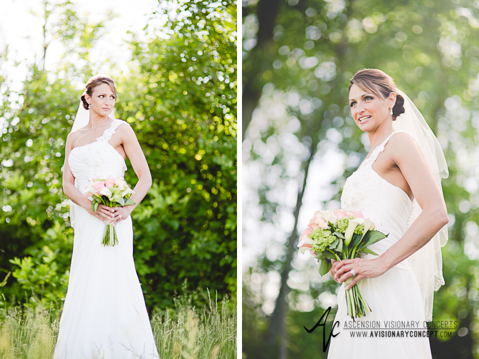 Buffalo Wedding Photography 24 Diamond Hawk Golf Course - Bride Tall Grasses Summer Fields.jpg