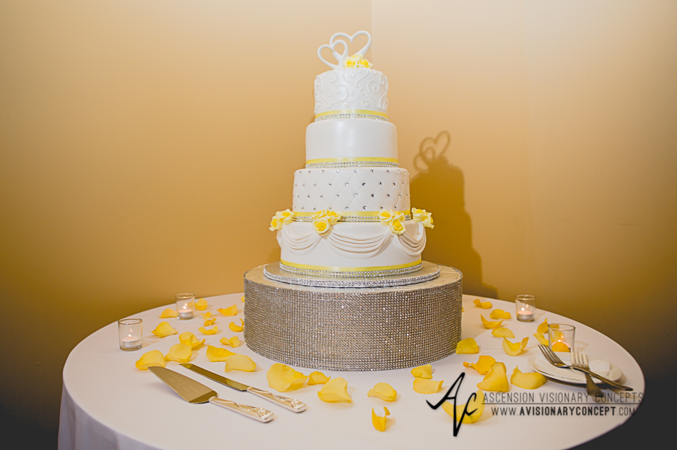 Buffalo Wedding Photography Avanti Mansion 50 Wedding Cake.jpg