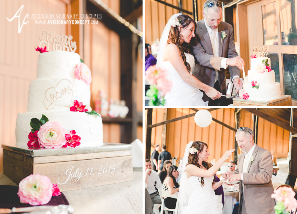 Buffalo Wedding Photography Lockport Locks Wedding 48 - Canalside Grove Outdoor Pavilion Wedding Cake Cutting.jpg