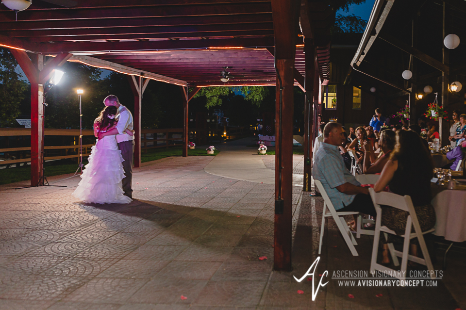 Buffalo Wedding Photography Lockport Locks Wedding 57 - Canalside Grove Outdoor Pavilion Wedding Reception Bride Groom First Dance.jpg