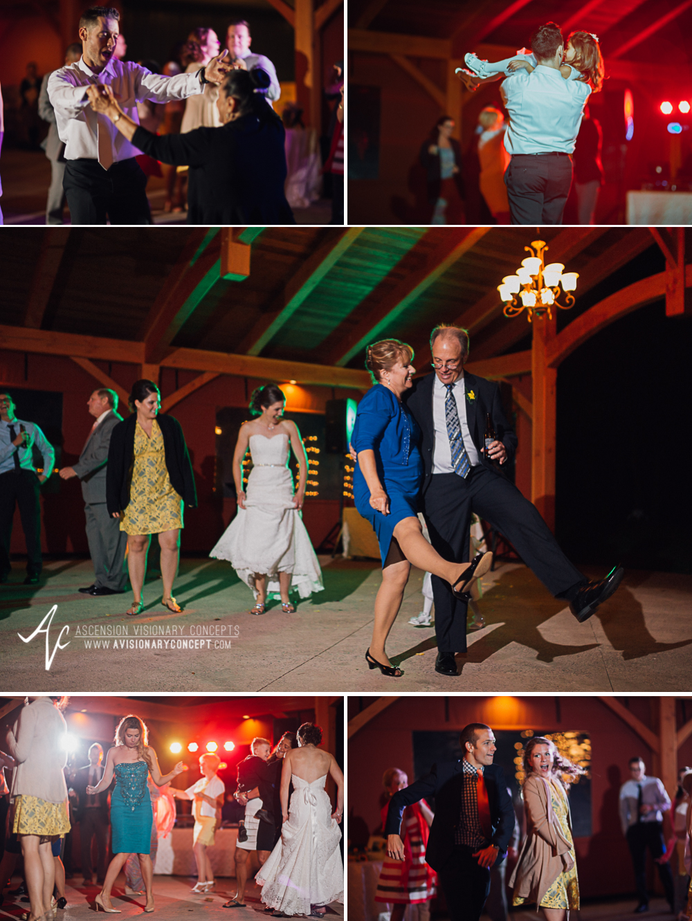 Buffalo Wedding Photography Spring Lake Winery 085 - Wedding Reception Dancing Party Lights.jpg