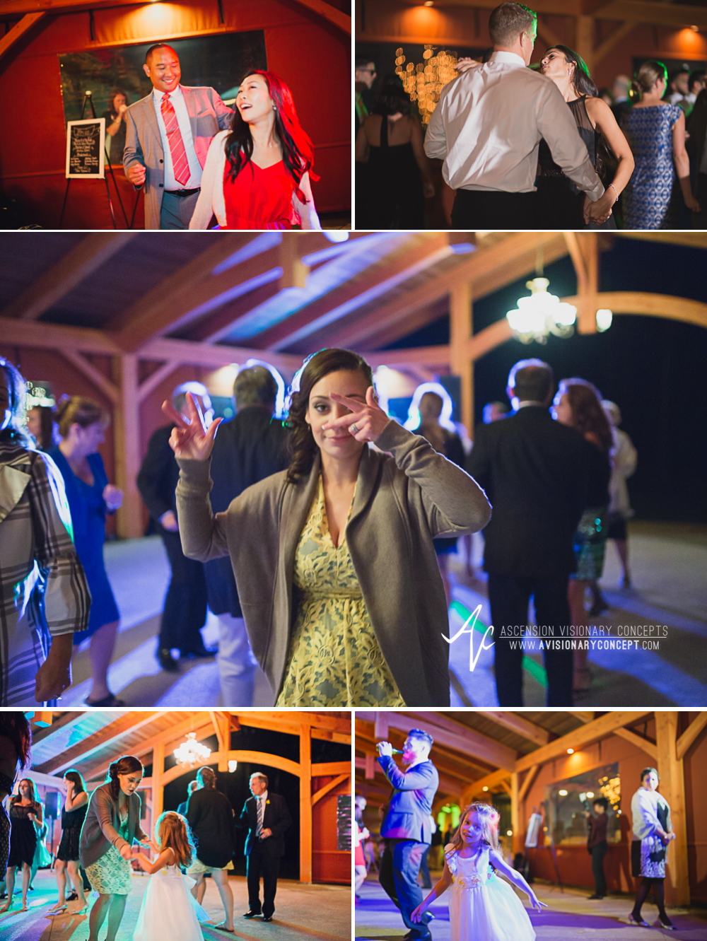 Buffalo Wedding Photography Spring Lake Winery 089 - Wedding Reception Dancing Party Lights.jpg