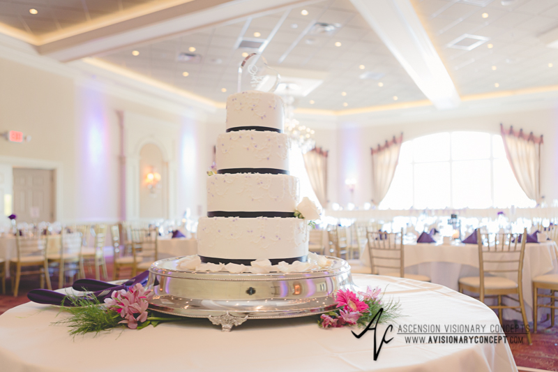 Buffalo Wedding Photography The Columns Banquets Millennium Hotel 028 - Reception Hall Wedding Cake.jpg