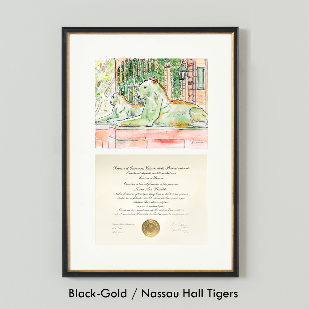 LAURA-ANN_Simply-Framed_Black-Gold_Nassau-Hall-Tigers.jpg