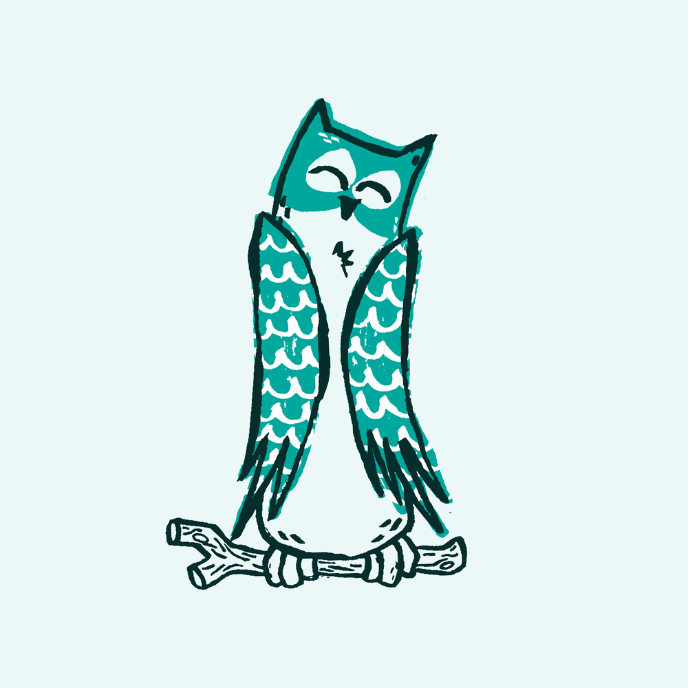 Owl Dude-01.png