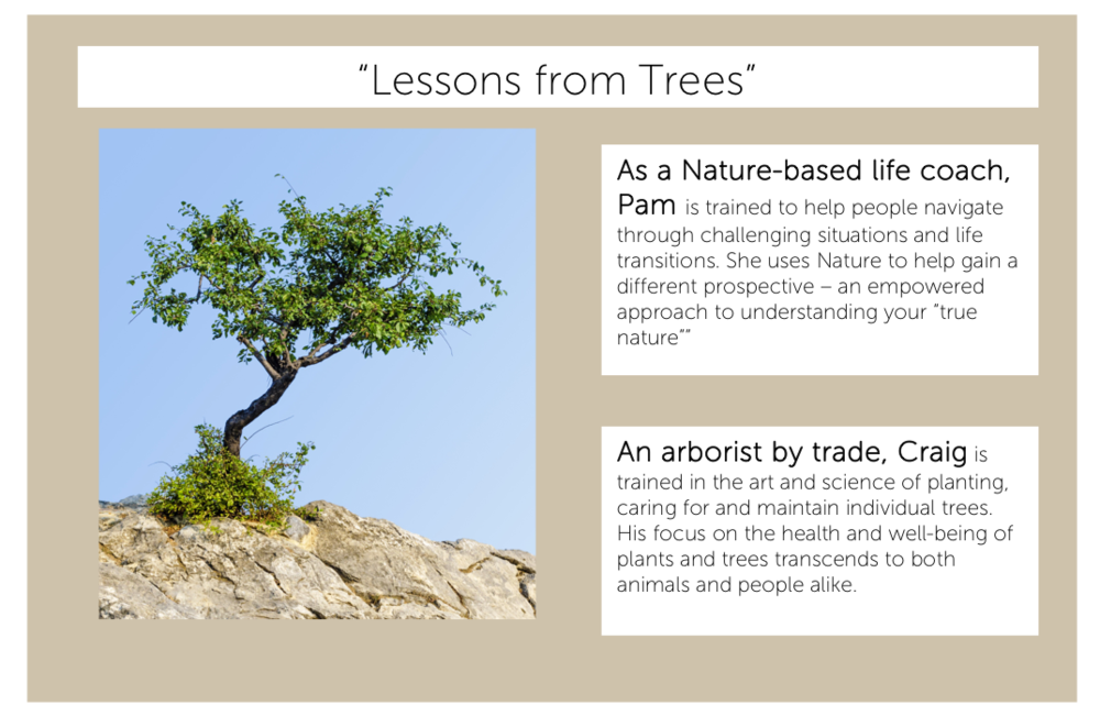 Lessons from Trees 2.png