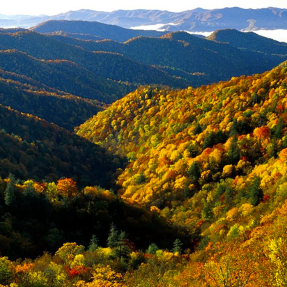 Smoky Mountains, fall copy.png