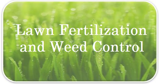 Fertilization and Weed Control FAQs.jpg