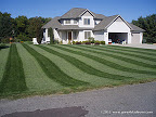 Feature Lawn Fridays