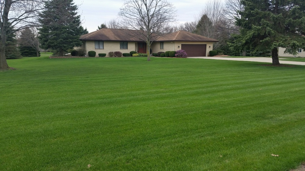 Jackson Feature Lawn 1.2