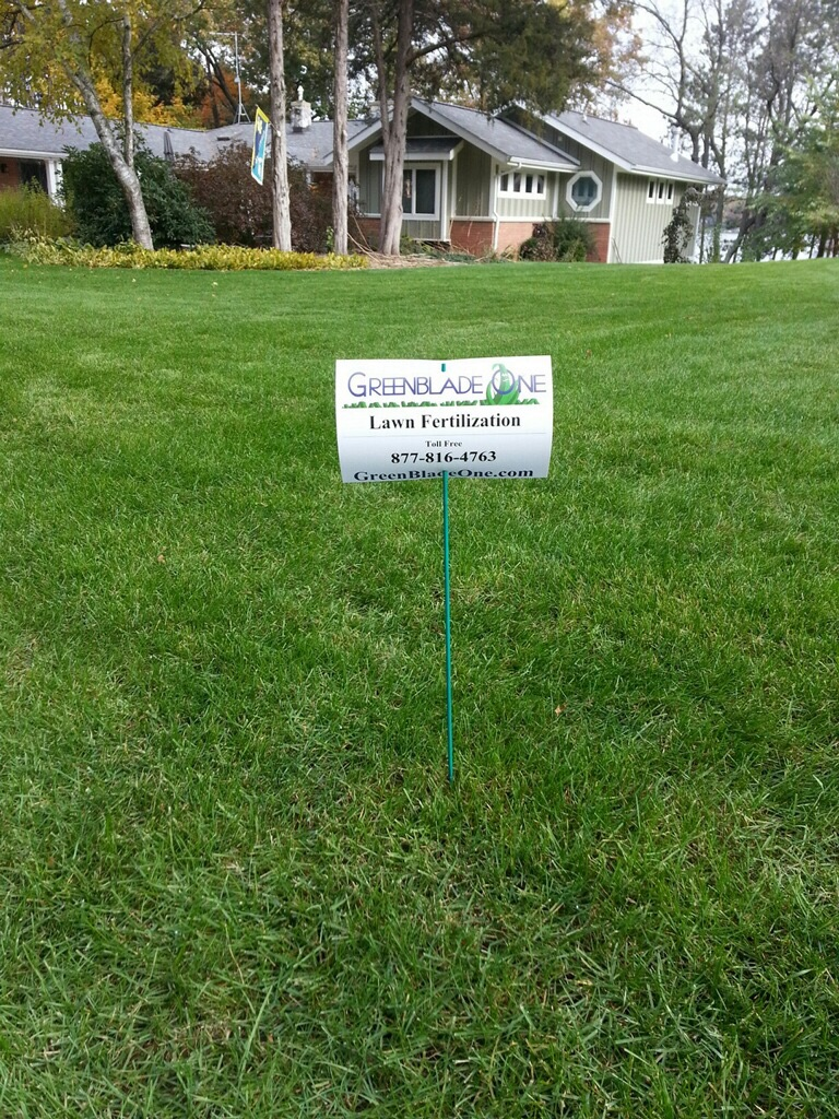 Feature Lawn Friday 8.26.16
