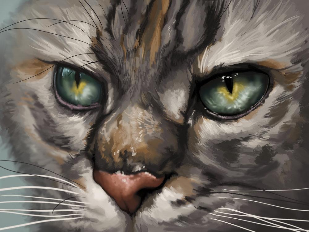 Katie cat commission.jpg