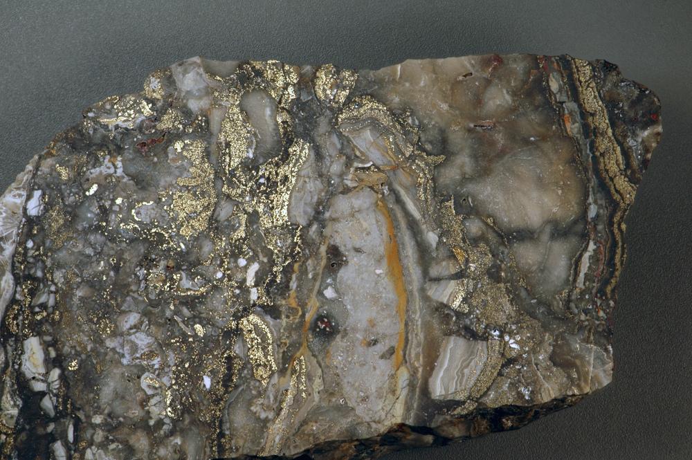 Auriferous_brecciated_quartz-adularia_rhyolite_(Sleeper_Rhyolite_Gold_Ore,_Nevada)_1_(14719259472).jpg