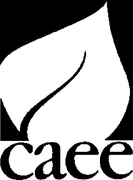 CAEE logo.jpg
