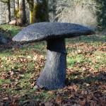 mushroom-January-004-150x150.jpg