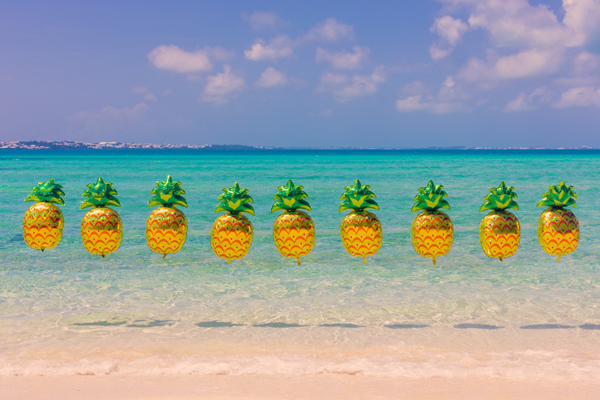 gray_malin_bermuda_pineapples_final_2_1.png