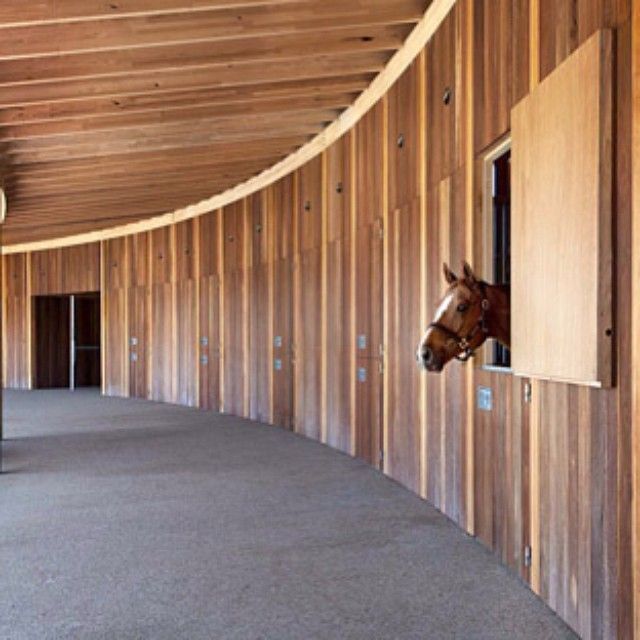Suite__equestriancentre__studiosethstein__wood__architects__archilovers__architecture__melbourne__australia_by_christinebodino.jpg