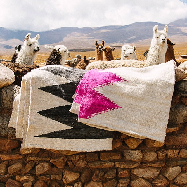 This_is_the_backyard_of_one_of_the_artisans_that_weave_the_Puna_collection._From_Argentina_with_love_____wearepampa__explore__art__preserve__heritage__empower__culture__nature__llamas__rugs__wool__weavers_by_wearepampa.jpg