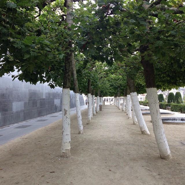 FAVOURITE_BXL_SPOT___bxl__bruxelles__latergram__kunstberg__trees__brussels_by_charliehie.jpg
