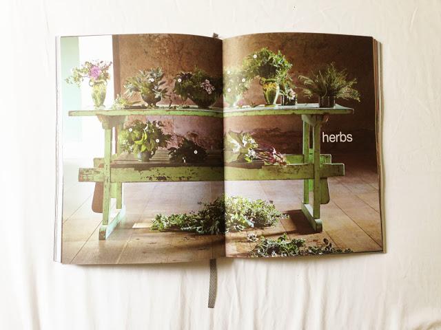 Babel_Babylonstoren_cookbook_08.jpg