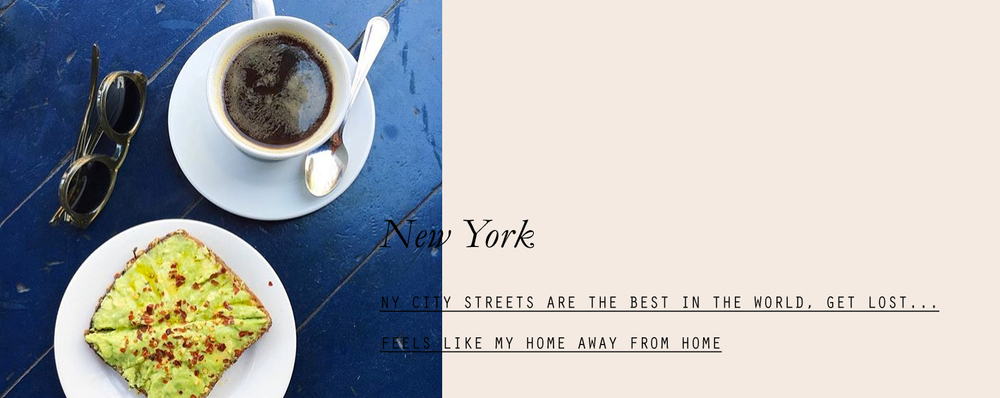 newyork-lespetitespestes-11.jpg