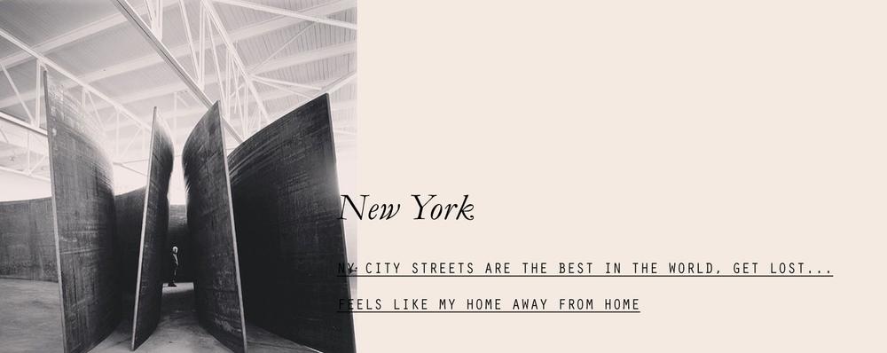 newyork-lespetitespestes-01.jpg