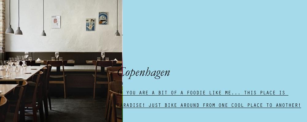 https://lespetitespestes.squarespace.com/copenhagen