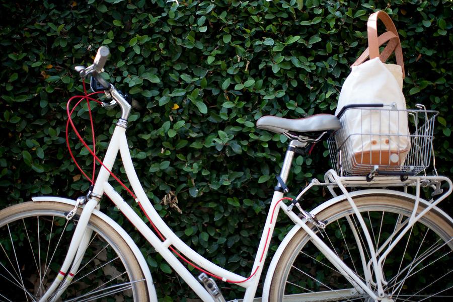hotelsanjose-rental-bikes.jpg