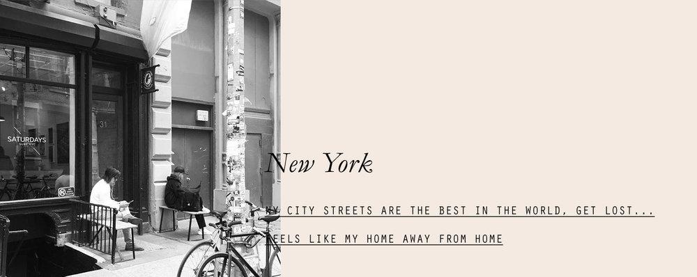 newyork-lespetitespestes-04.jpg