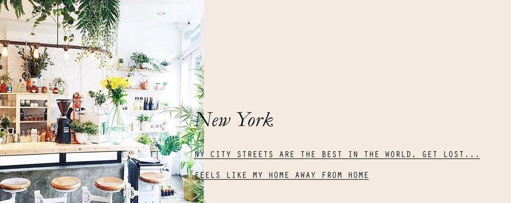 newyork-lespetitespestes-03.jpg