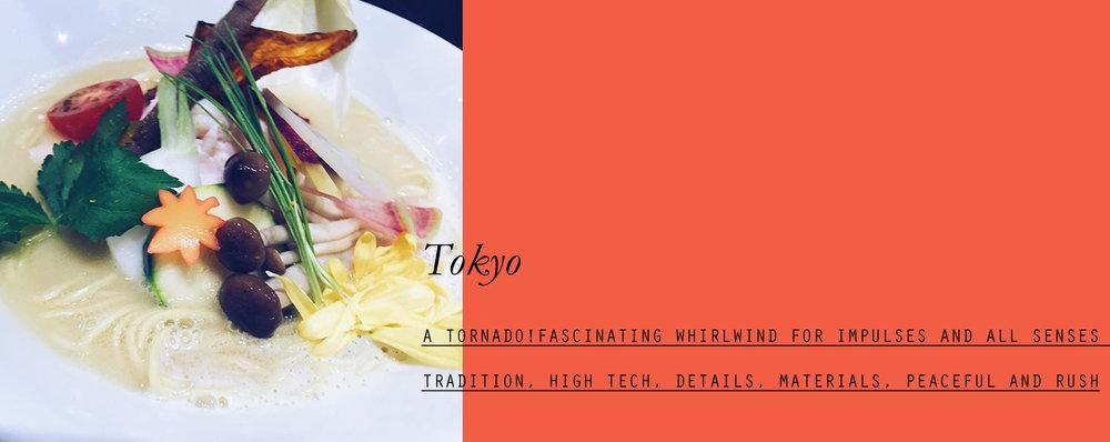 tokyo-lppcityguidetotokyo-lppcityguide-24.jpg