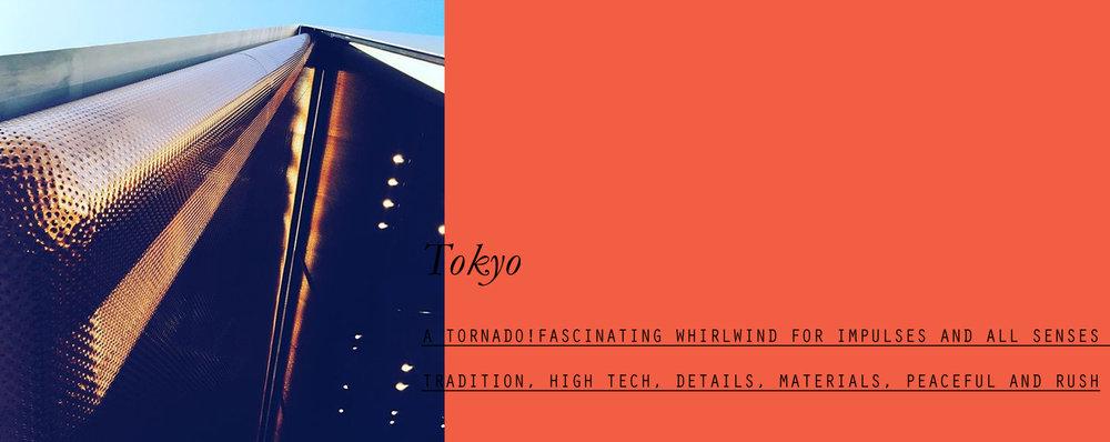 tokyo-lppcityguidetotokyo-lppcityguide-lespetitespestes-05.jpg