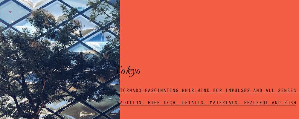 tokyo-lppcityguidetotokyo-lppcityguide-lespetitespestes-01.jpg