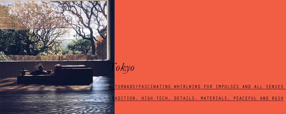 tokyo-lppcityguidetotokyo-lppcityguide-lespetitespestes-03.jpg