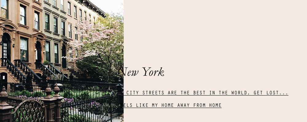 newyork-lespetitespestes-02.jpg