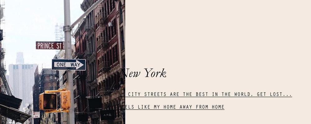 newyork-lespetitespestes-06.jpg