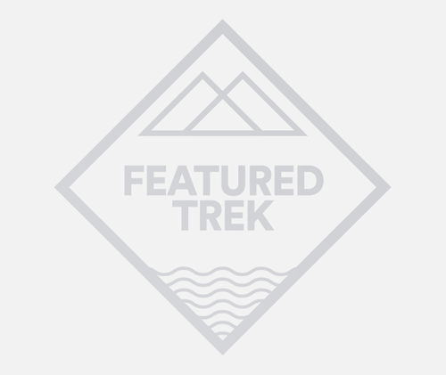 Trek America Branding / Design / UI