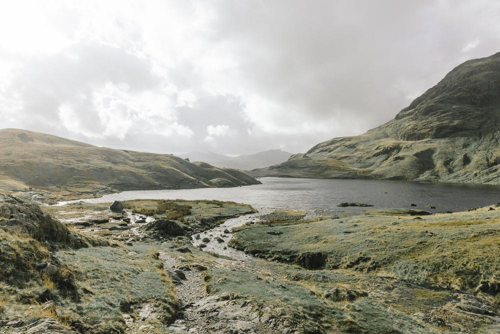 Landscapes-8523.jpg