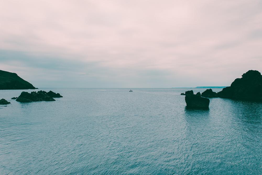 Cove-4015.jpg