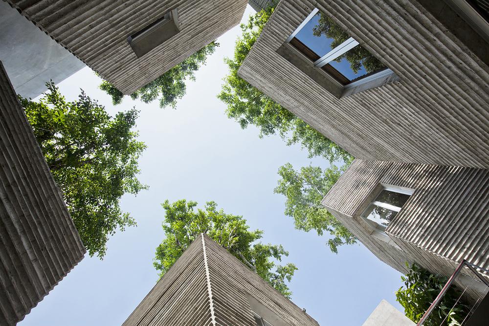 house-for-trees_3.jpg