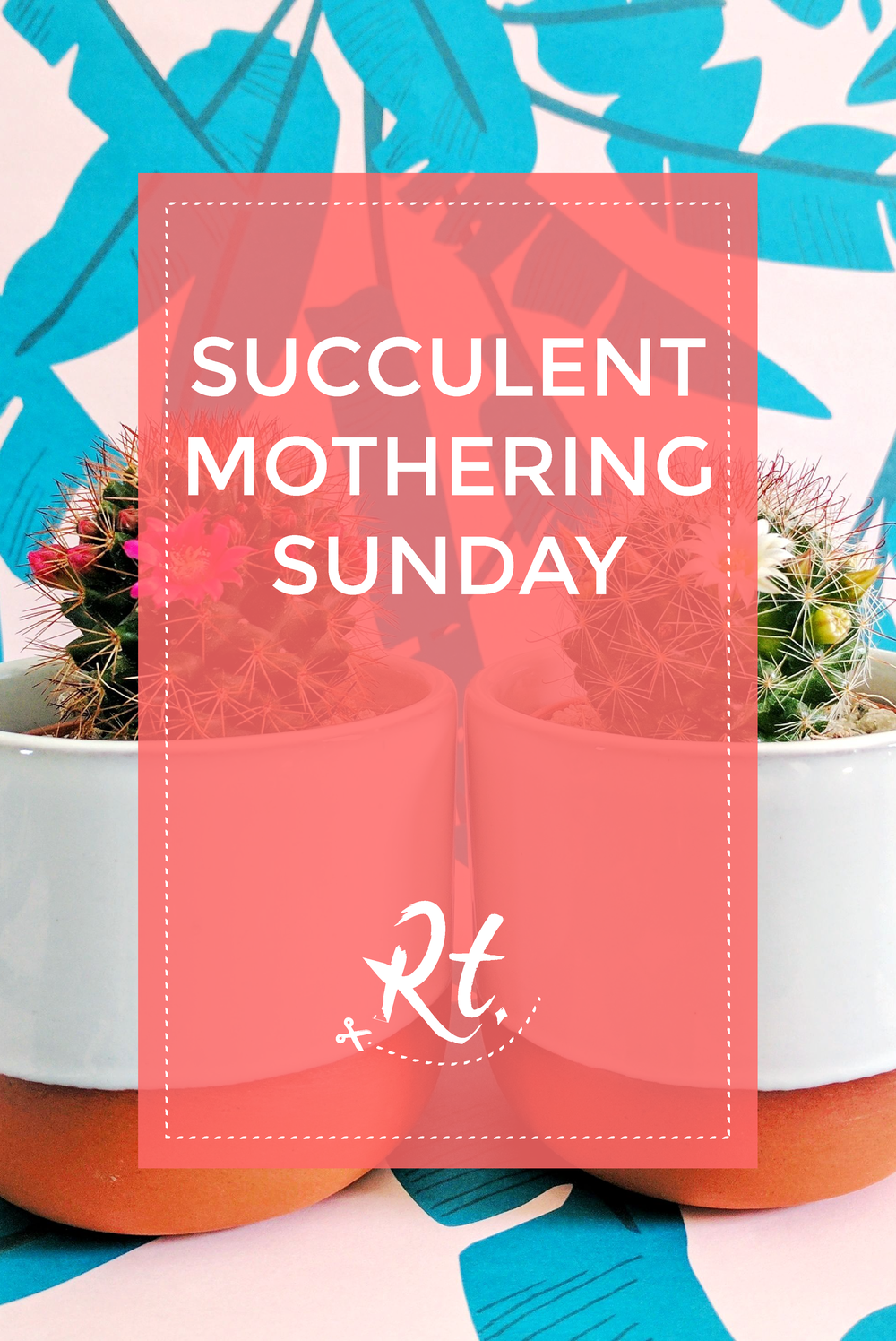 Prick LDN, Succulent Cacti gifts