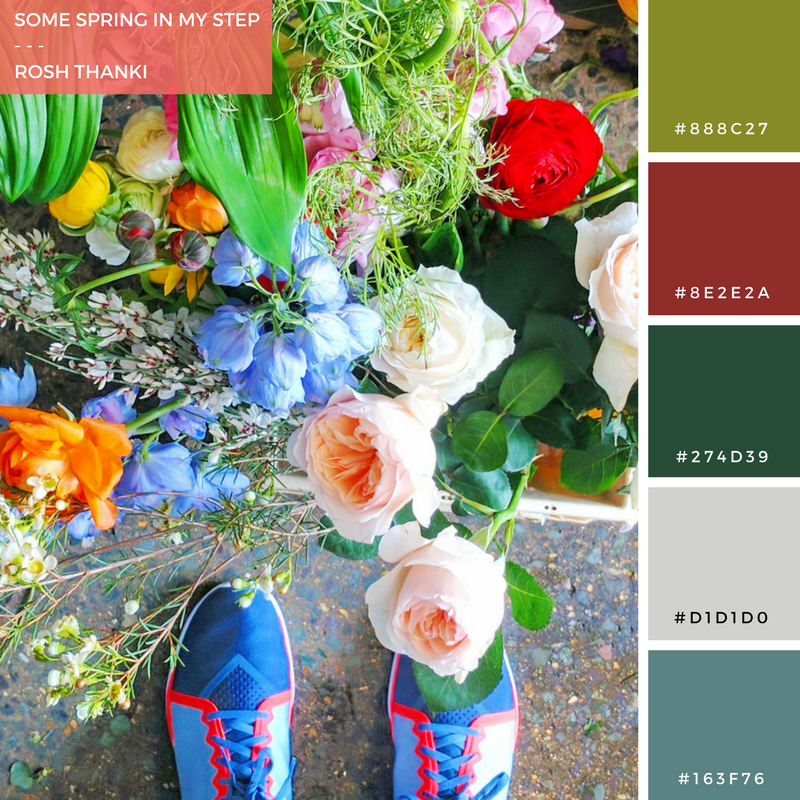 Colour Palette for Some Spring in My Step by Rosh Thanki, Nike Trainers at Rebel Rebel flowers