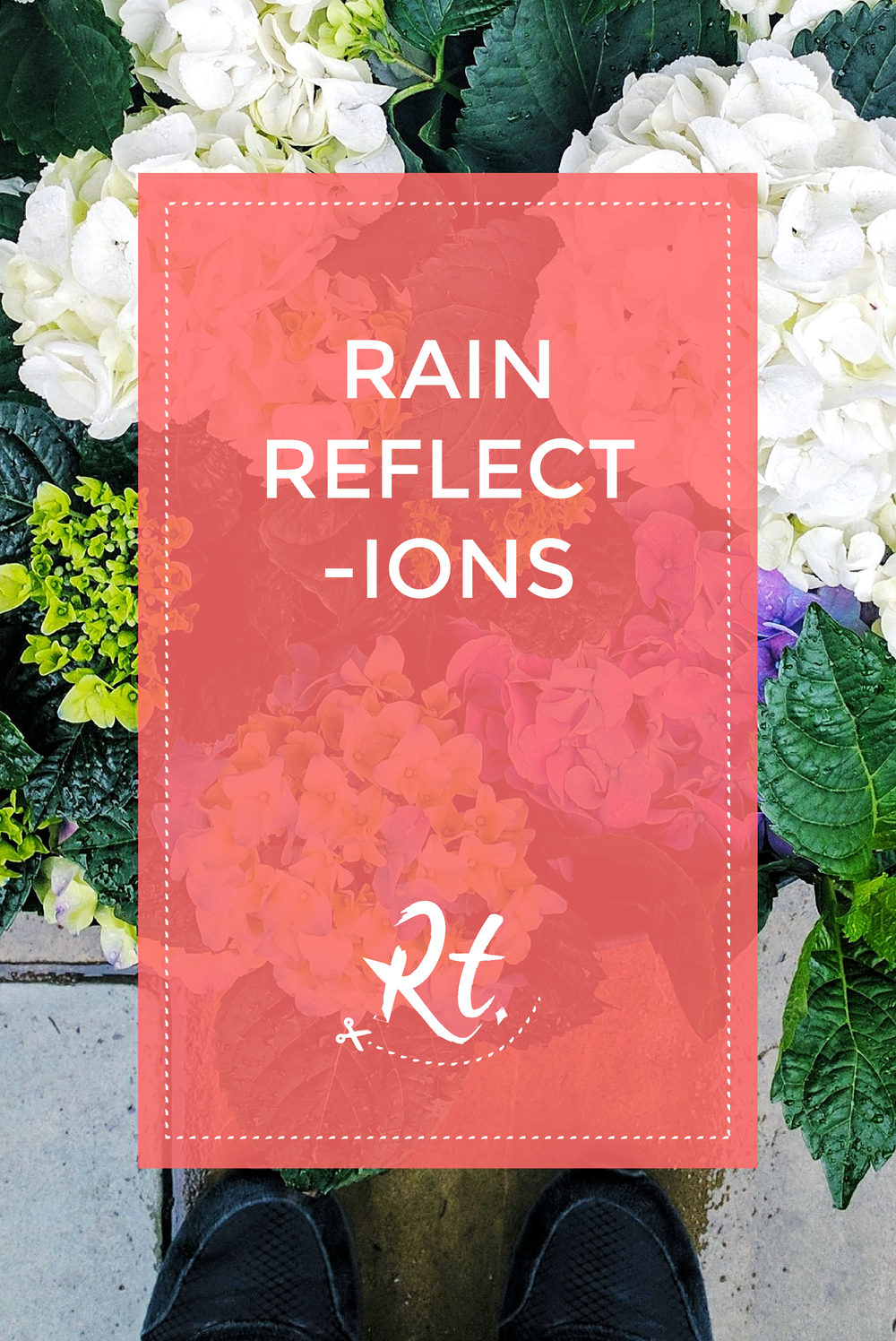 Rain Reflections by Rosh Thanki, hydrangeas from that flower shop, shoreditch