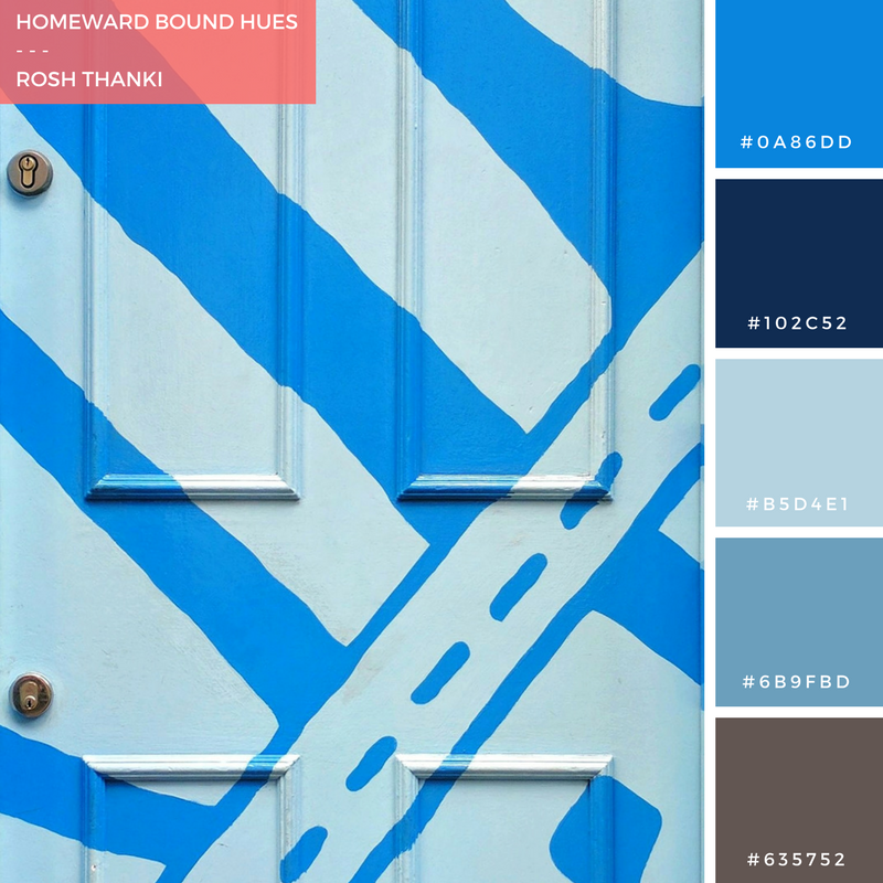 Colour Palette for Homeward Bound Hues by Rosh Thanki, Carnaby Street Gravity Road door
