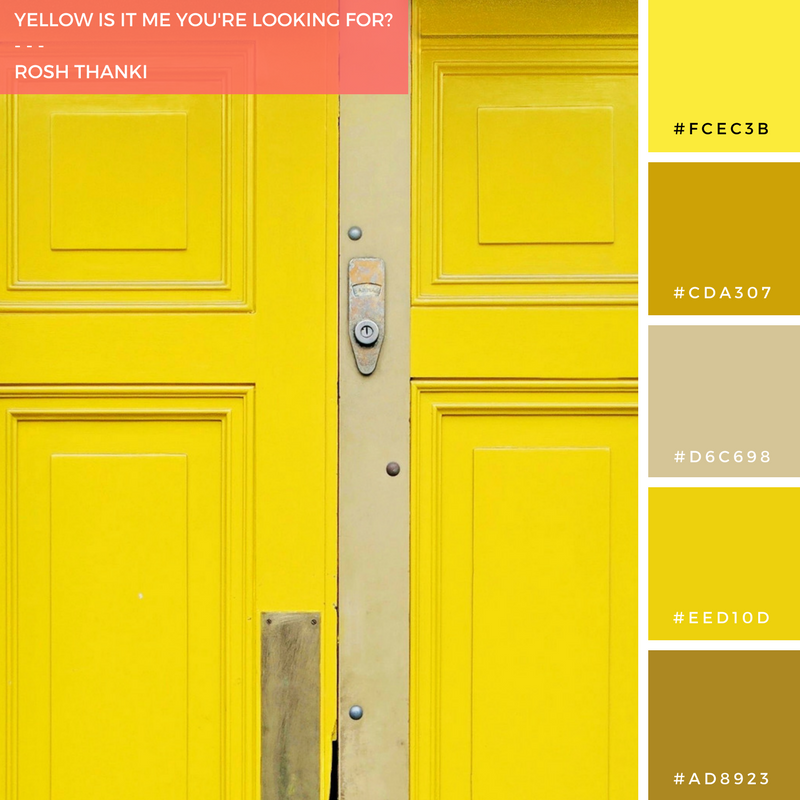 Colour Palette for Yellow is it Me You're Looking For by Rosh Thanki, yellow door at Life Food cafe