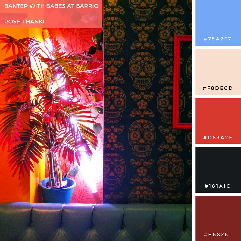 Colour Palette for Banter with Babes at Barrio by Rosh Thanki, Barrio Soho interior.png