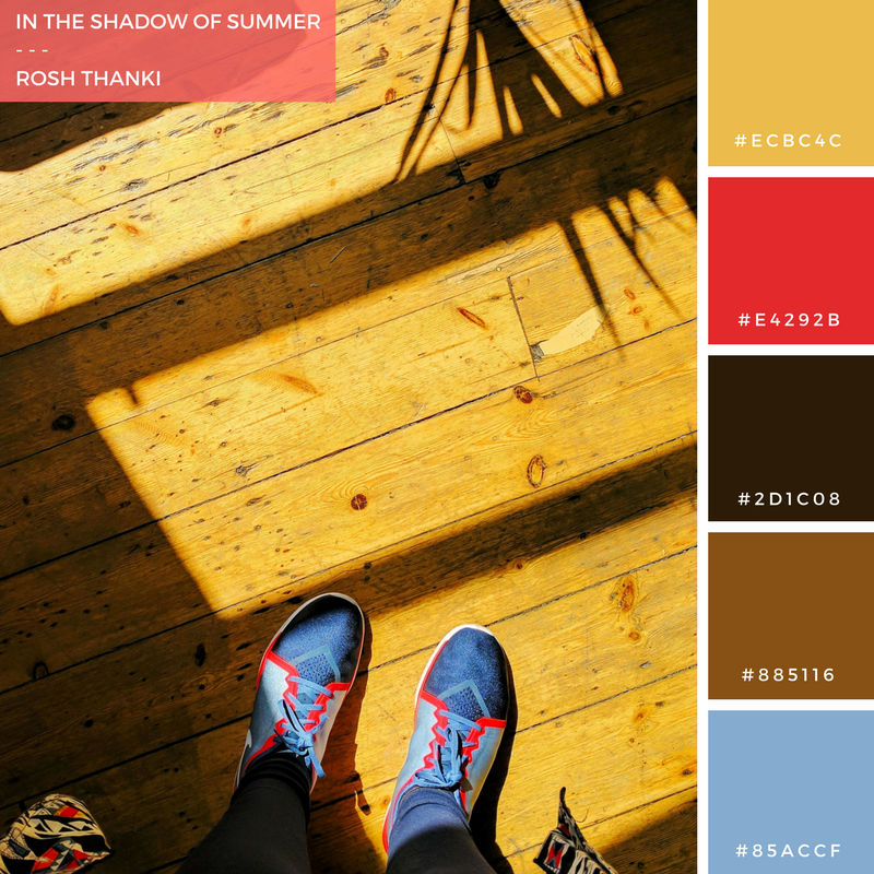 Colour Palette for In the Shadow of Summer by Rosh Thanki, From Where I Stand Photo with Shadow Play