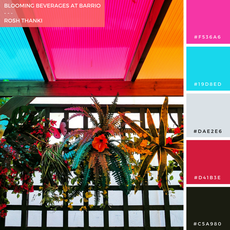 Colour Palette for Blooming Beverages at Barrio by Rosh Thanki, outdoor colourful terrace