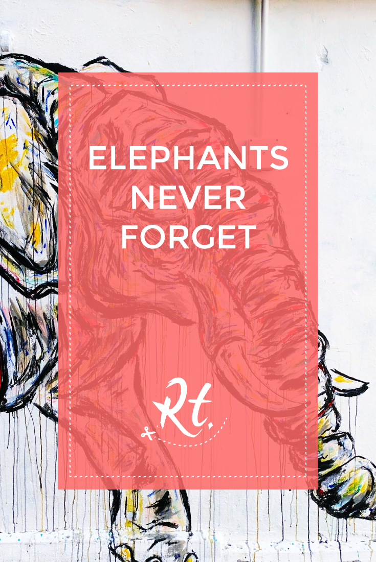 Elephants Never Forget by Rosh Thanki, elephant street art by the roaming elephant in Camden Town